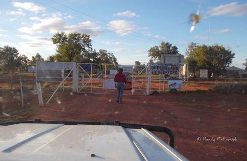 159 dog fence